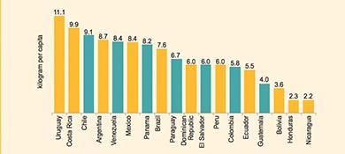 Cada argentino genera 9 kilos de basura electrónica por año