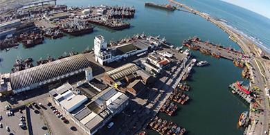 ¿Por qué Microsoft y Facebook elegirían a Bahía Blanca para sus datacenters?