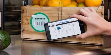 IBM lanza una red global de seguimiento de alimentos, basada en blockchain