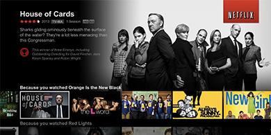 Netflix creció más de lo esperado y superó los 100 millones de suscriptores