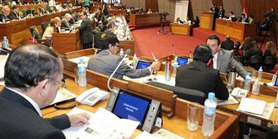 La Cámara de Diputados rechazó la polémica ley Pyrawebs