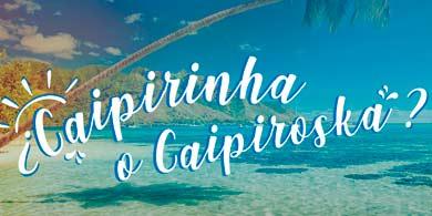 Distecna lanzó Travelers, y viajará a Brasil junto a 10 partners