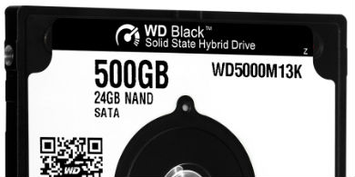 WD y SanDisk combinan sus tecnolog�as flash y solid state